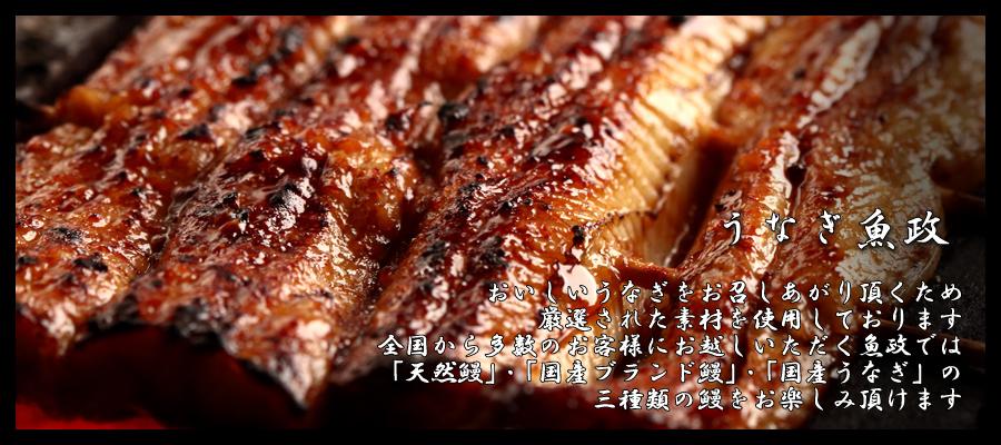 うなぎ魚政>